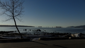 A winter shot of English Bay showing tree, sky and ocean (Vancouver, B.C.).